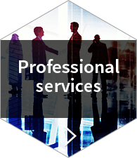 Professional Services Case Studies