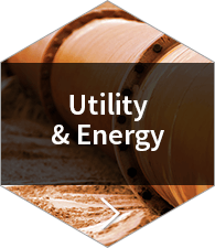 Utility & Energy Case Studies