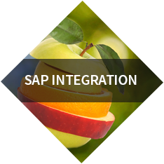 SAP integration