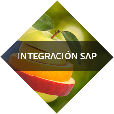 Integración SAP